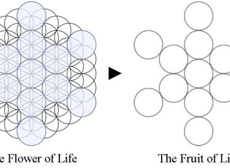 心と身体の調整ワーク9の章