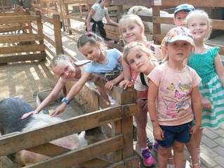 Воскресная школа «Надежда» в контактном зоопарке