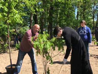 «Лес Победы» в Люберцах
