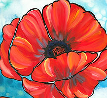 Poppy Crop.jpg