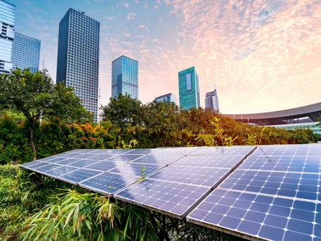 Il 42% delle aziende E-commerce non è sostenibile, fa solo Greenwashing