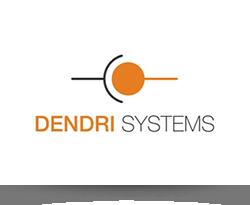 Dendri systems