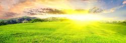 320827-bright-sun-landscape_edited
