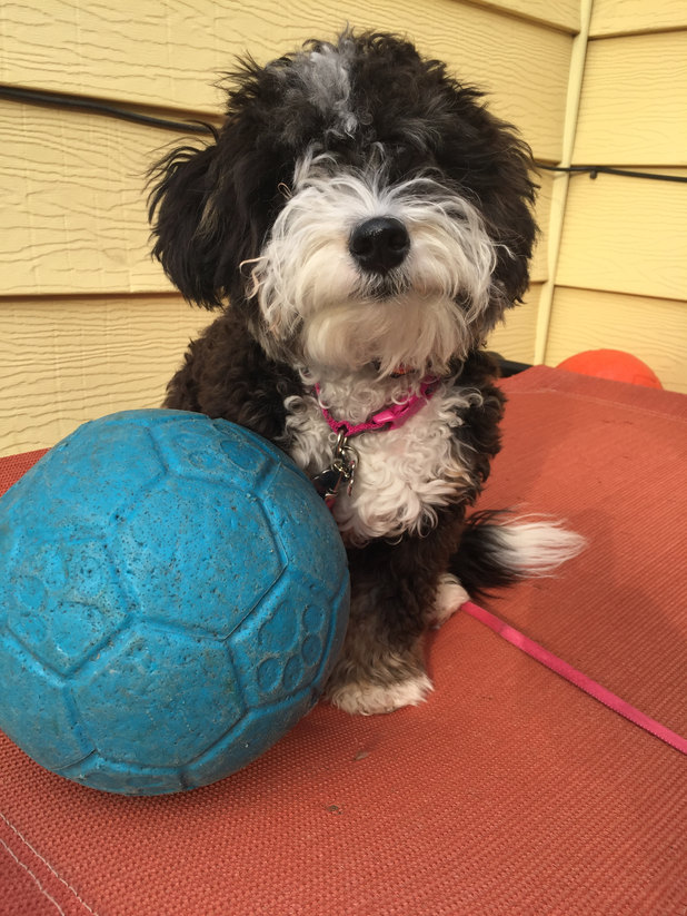 Delilah, Life Skills & Jump Start Programs