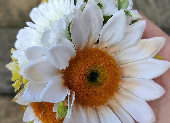 Daisies hairflower