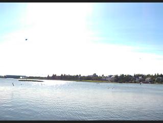 ...retour et détour par Reykjavík, and the marvellous sunny light of the iced land...