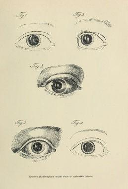 258px-Purkyne_1823_eyes.jpg