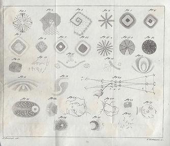 Jan-Evangelista-Purkinje-flicker-pattern