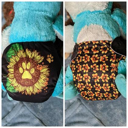 Sunflower Paws