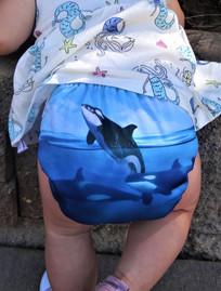 orca.jpg