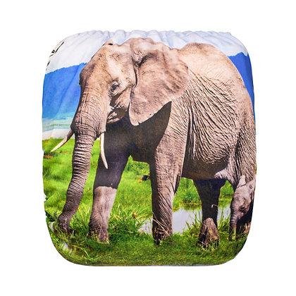 Mama/Baby Elephants