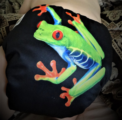 frog2_edited.jpg