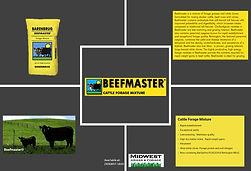 Beefmaster.jpg