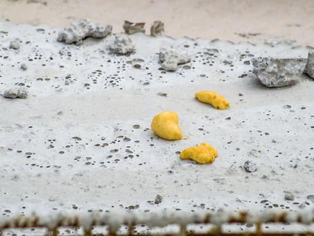 """Construction du Musée de la Mer et de la Marine : Mes images """"extra-terrestre"""" !"""