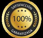 satisfaccion-100.png