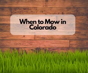 When to Mow in Colorado
