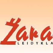 zara_logo