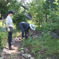 Volunteers at the garden
