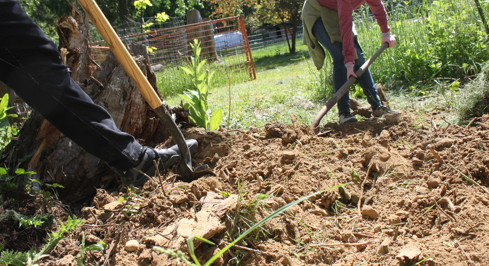 Breaking ground for our Hugel