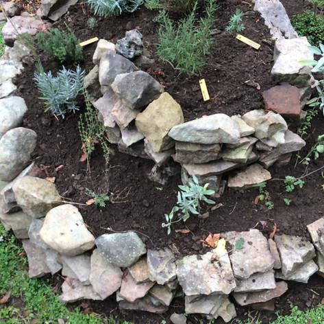 Spiral garden planted
