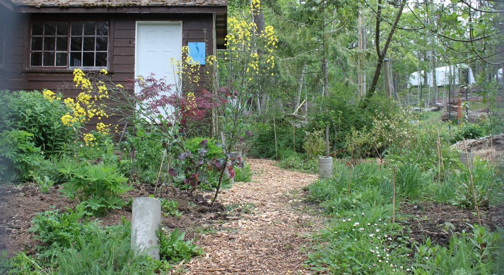 The Pollinator Garden (winter flood zone)