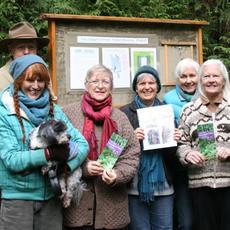 ThINC Board Presenting Fairyslipper Forest