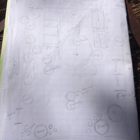 Plotting out the garden