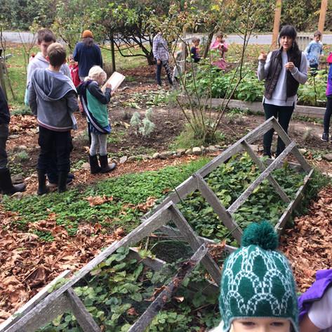 Thetis Island School visit