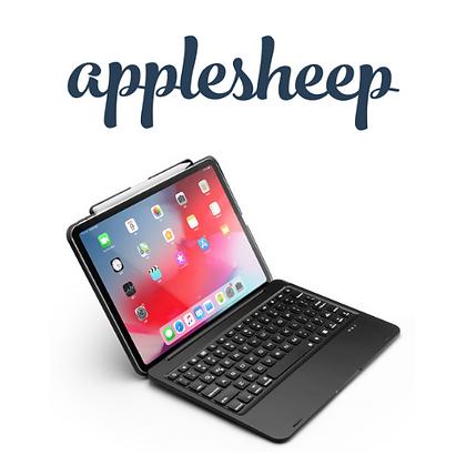 Laptopcase For iPad Pro 11