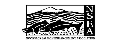 Black NSEA Logo 640x244.png