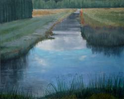 Stillwater Marsh