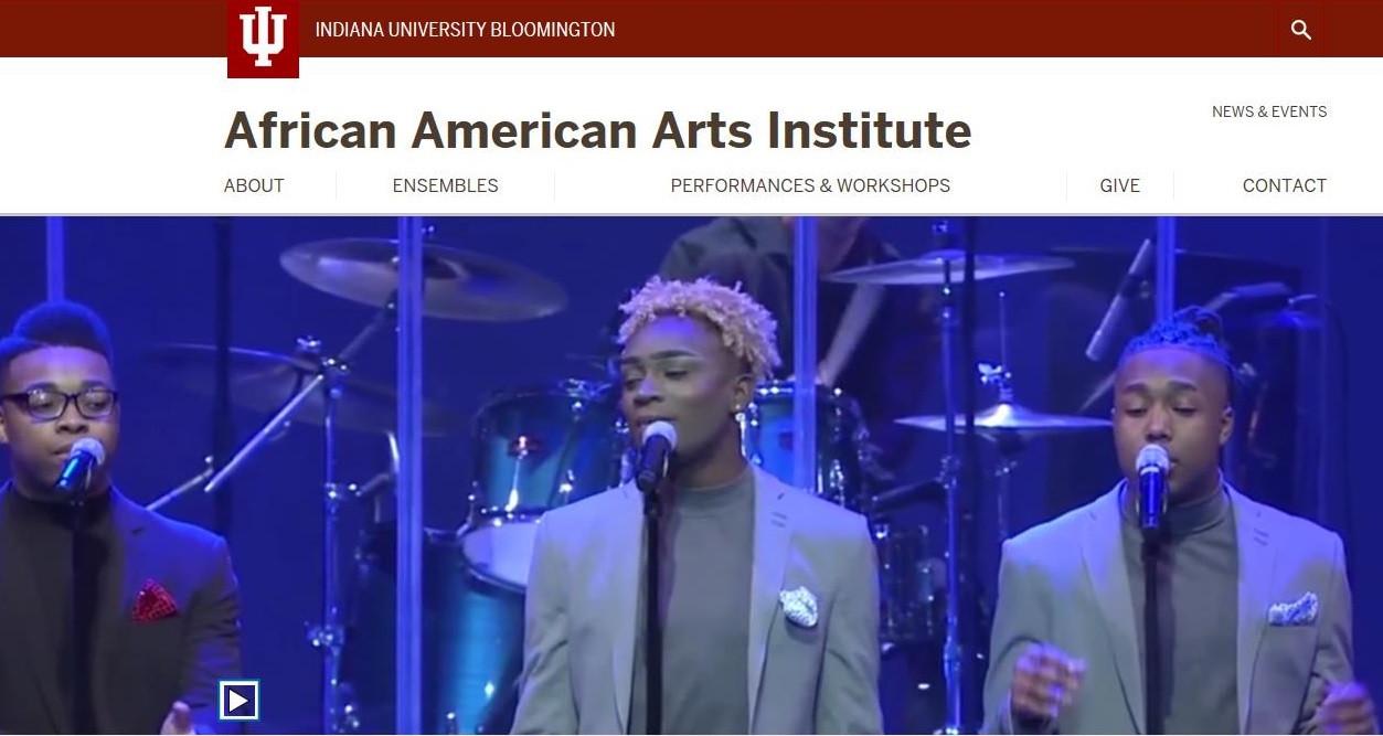 African American Arts Institute