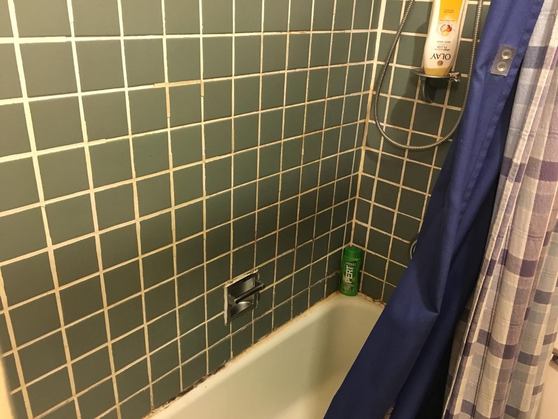 Old Tile & Shower