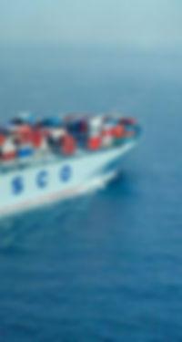 การขนส่งไม้สนรัสเซียทางเรือ