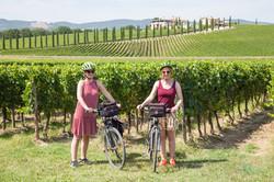 Ride through the vineyards