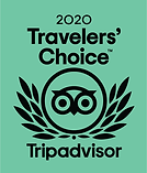 Trip Advisor Badge .png