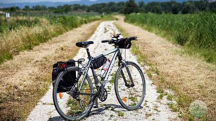 Greenways Ital Bikes