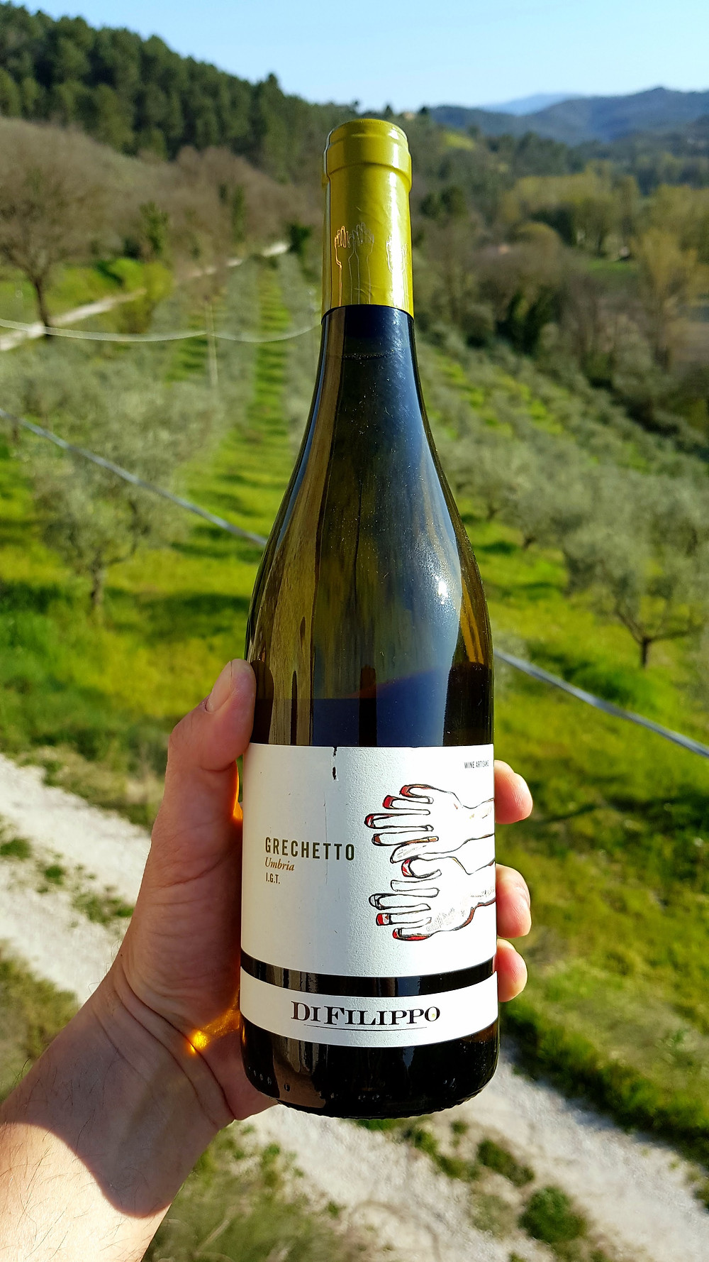 Rosè Wine from Umbria Cantina La Fonte Bevagna
