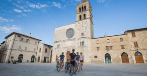 Why you should try a local bike tour on your next trip.