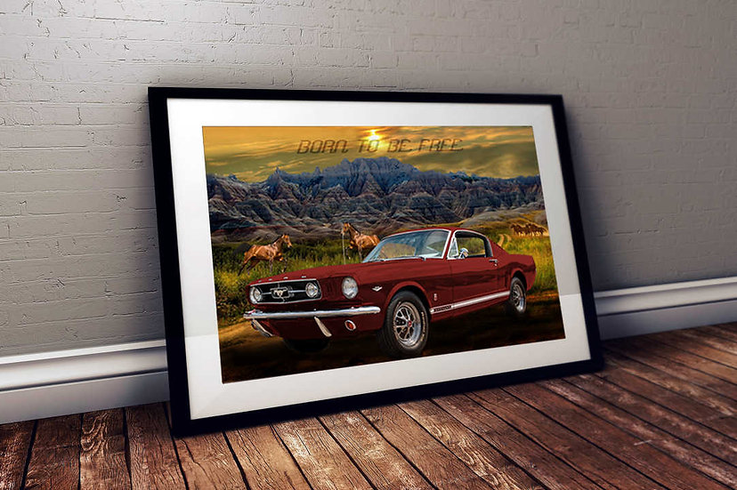 """1965 Mustang GT - """"Born To Be Free"""""""