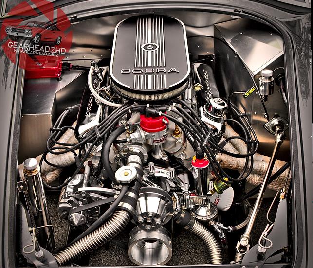 "AC Cobra Engine Bay - ""Guts & Glory"""