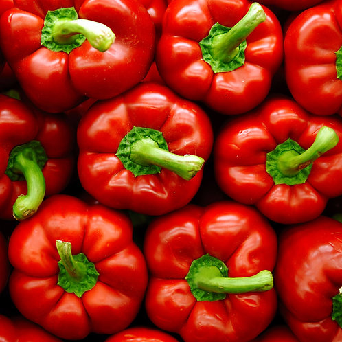 Certified Organic Red Capsicum