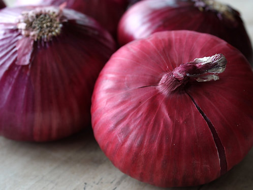 Certified Organic Spanish Onions