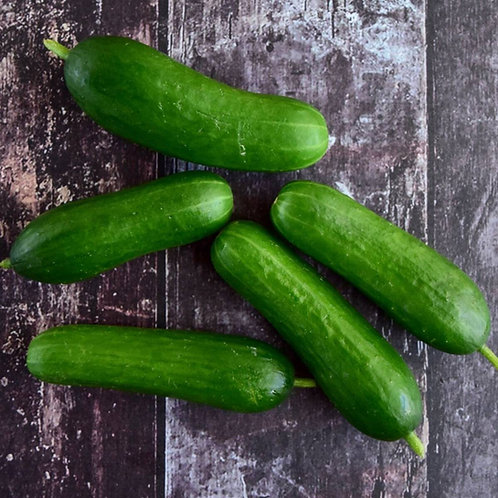 Certified Organic Lebanese Cucumber