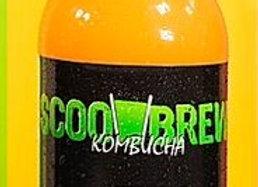 Scoo Brew Kombucha Carrot &Tumeric