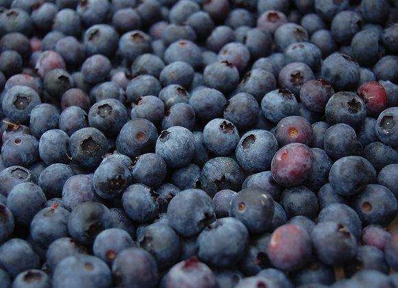 Wild Blueberries BULK 13.61kg