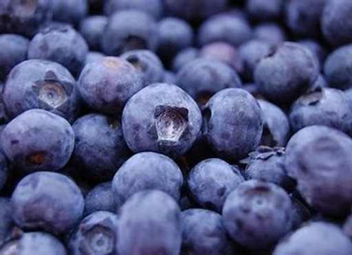 Certified Organic Wild Blueberries BULK 13.61kg
