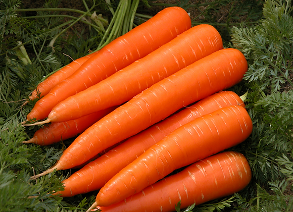 Certified Organic Premium Carrots