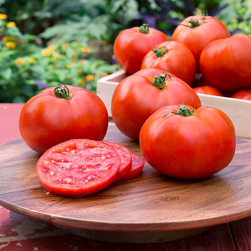 Organically Grown Gourmet Tomatos