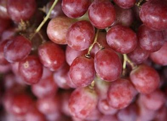 Certified Organic Seedless Ralli Grapes